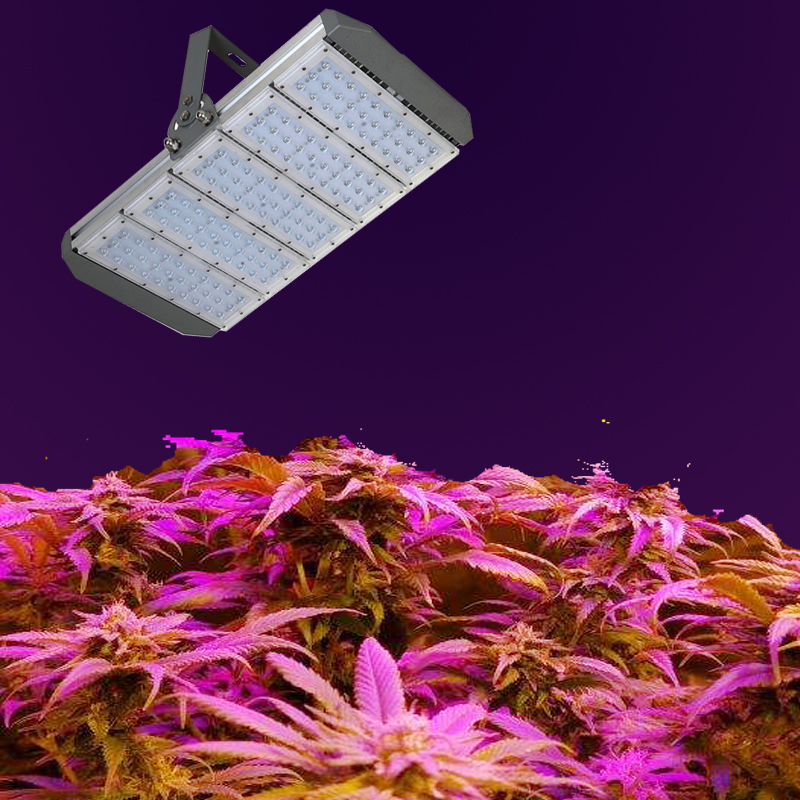 Led Grow Lights For Indoor Plants Retrofit Led Bulbs To
