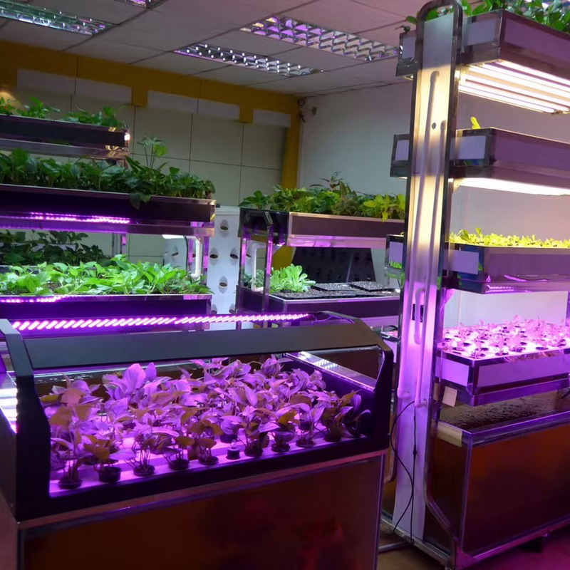 led plant grow strip light