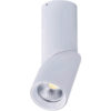 downlights dimmable