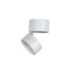 led downlights adjustable